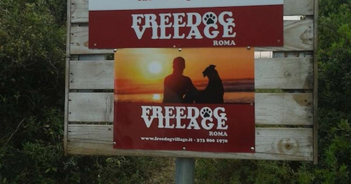 Salviamo FREEDOG VILLAGE