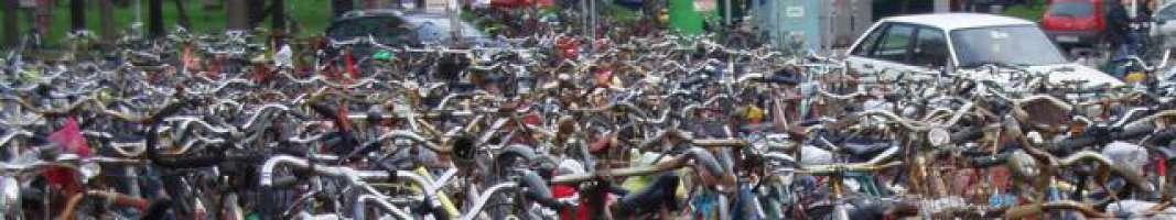 Petizione: Sandonatesi, salviamo le Piste Ciclabili